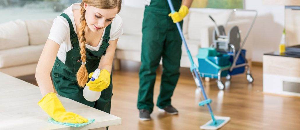 the clean edge cleaning services needham ma